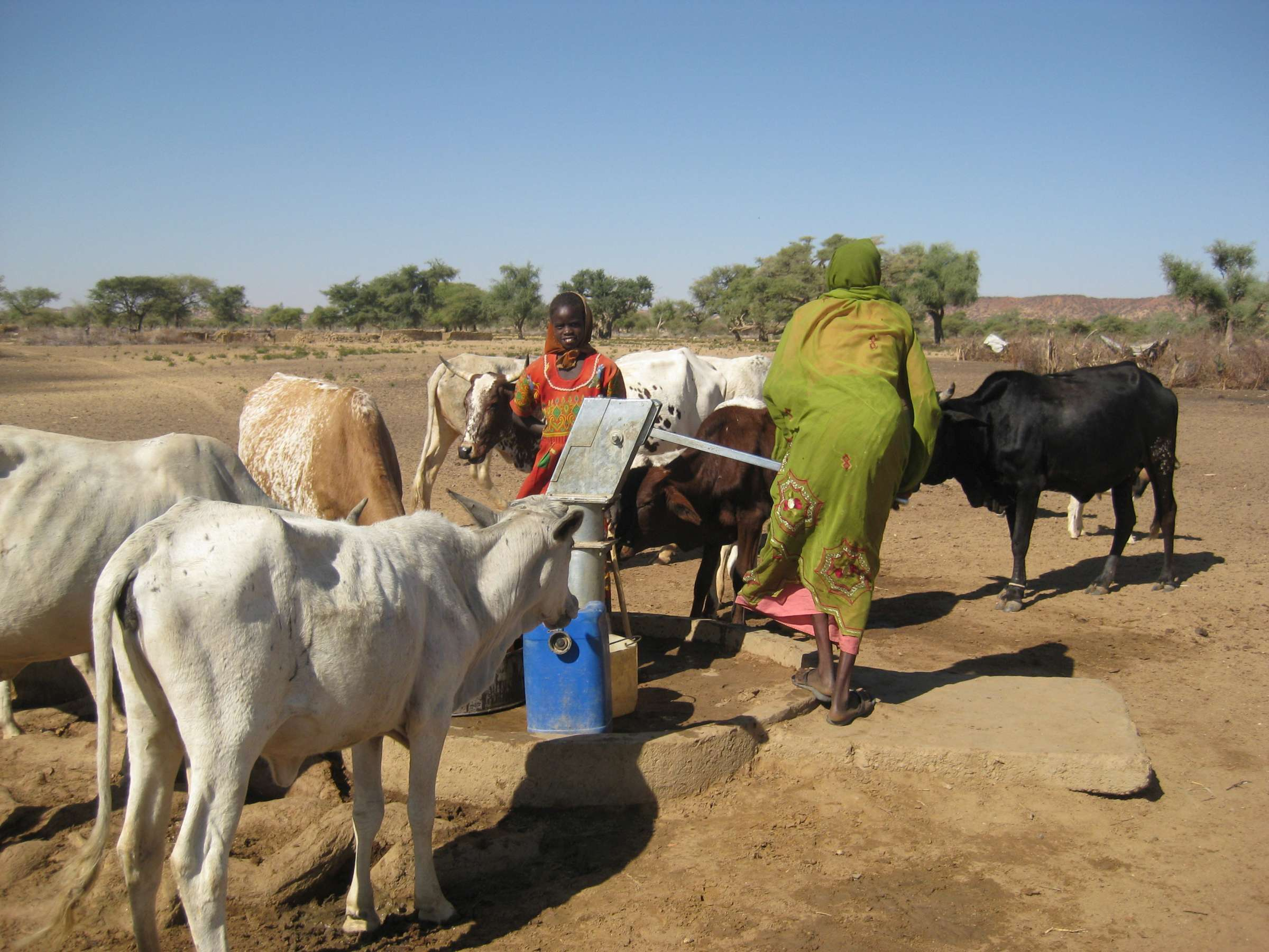 Access to water in Darfur